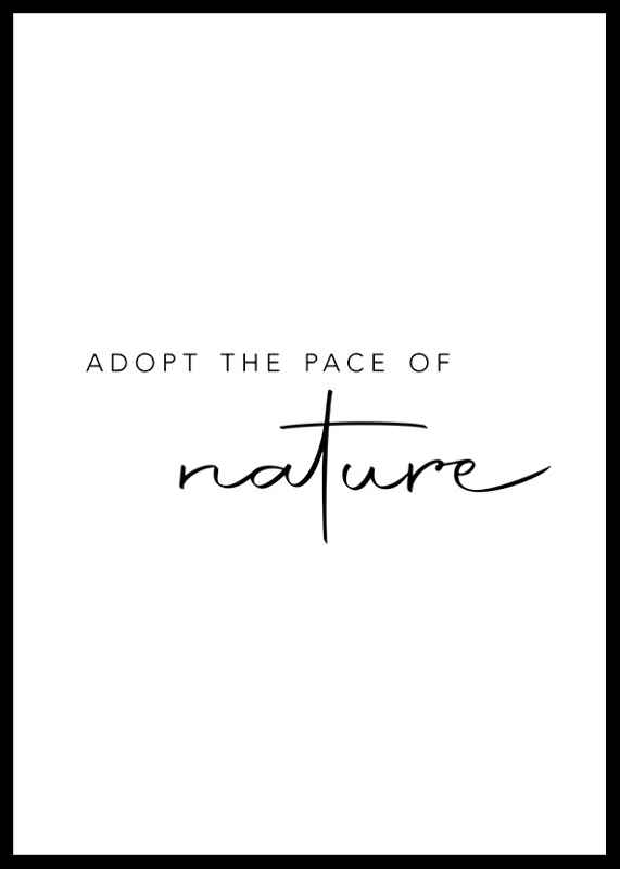 Pace Of Nature