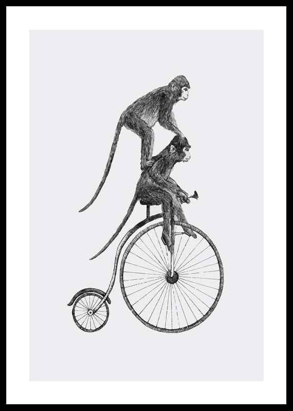 Monkeys On A Bike