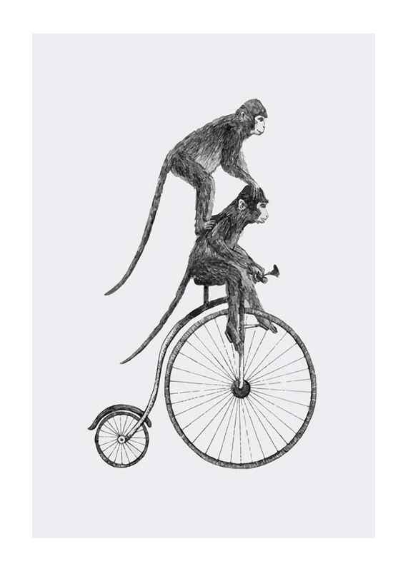 Monkeys On A Bike-1