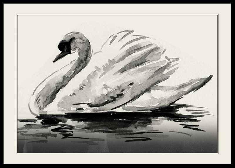 The Swan-0