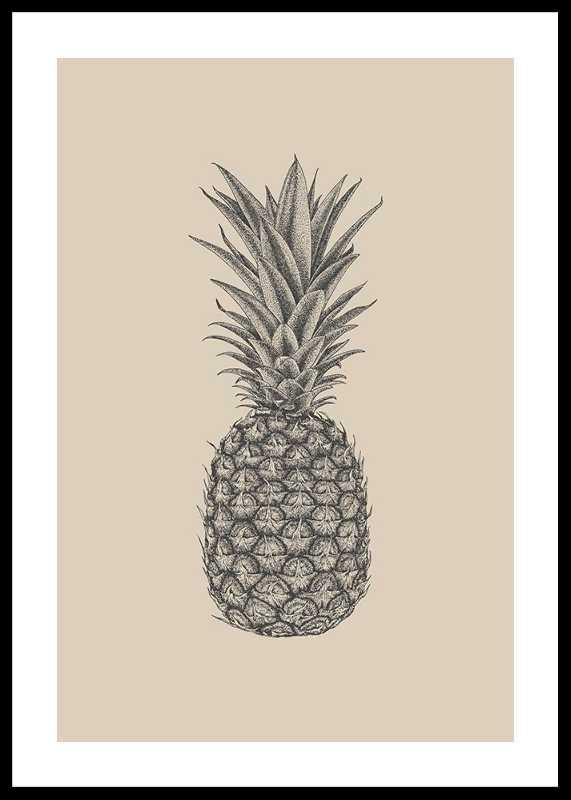 Pineapple Sketch