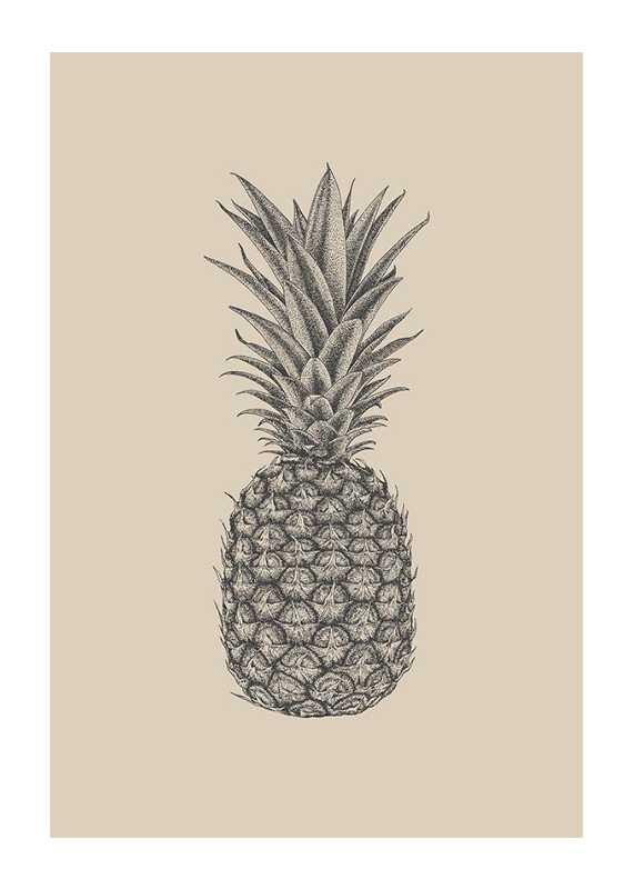 Pineapple Sketch-1