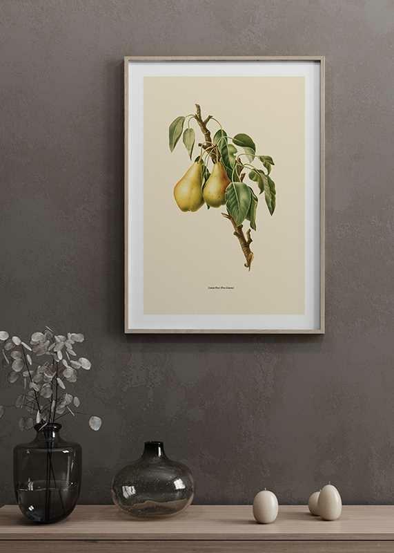 Lemon Pear-4