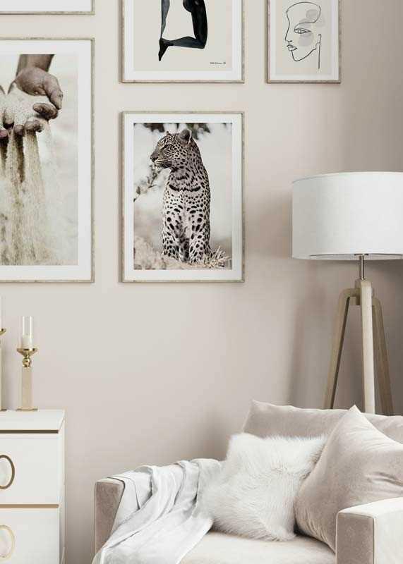 African Leopard-4