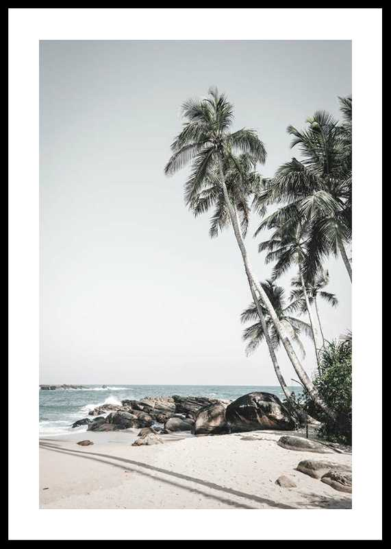 Anantara Palm Trees-0