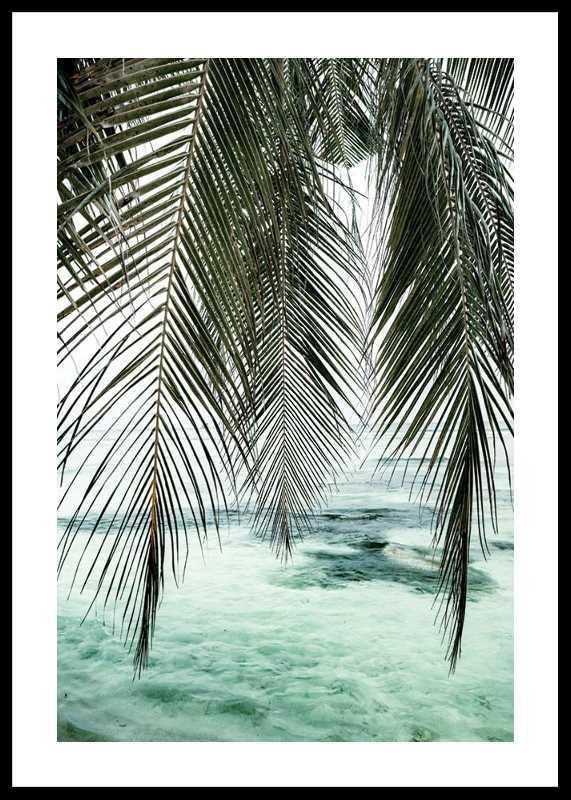 Palm Curtain