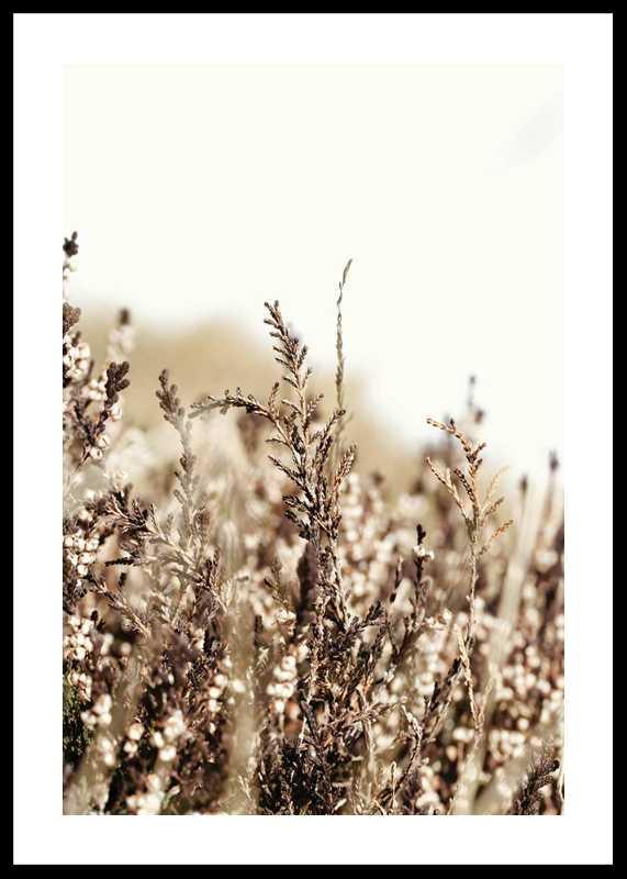 Growing Fields