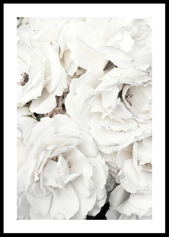 Bouquet Of White Peonies-0