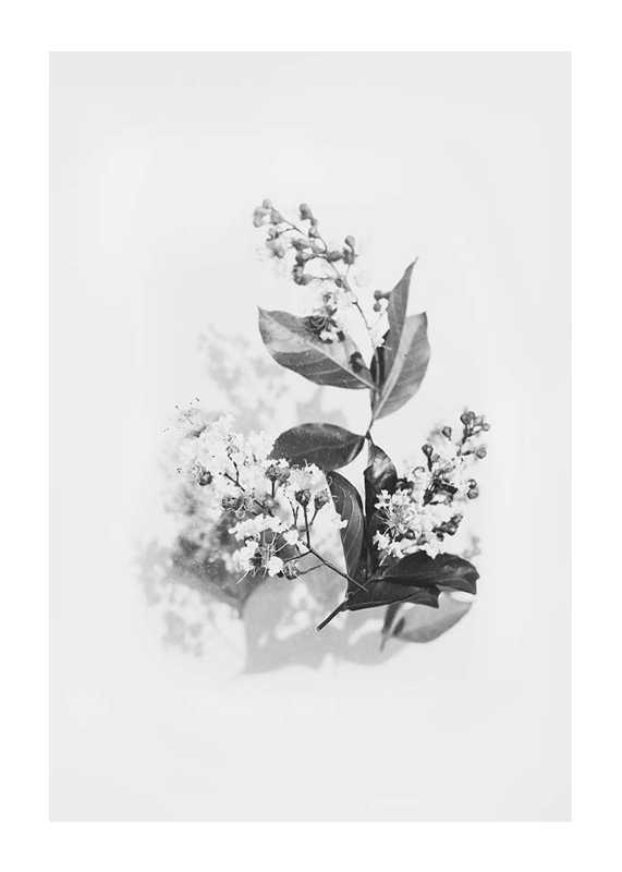 Floral arrangement No2-1