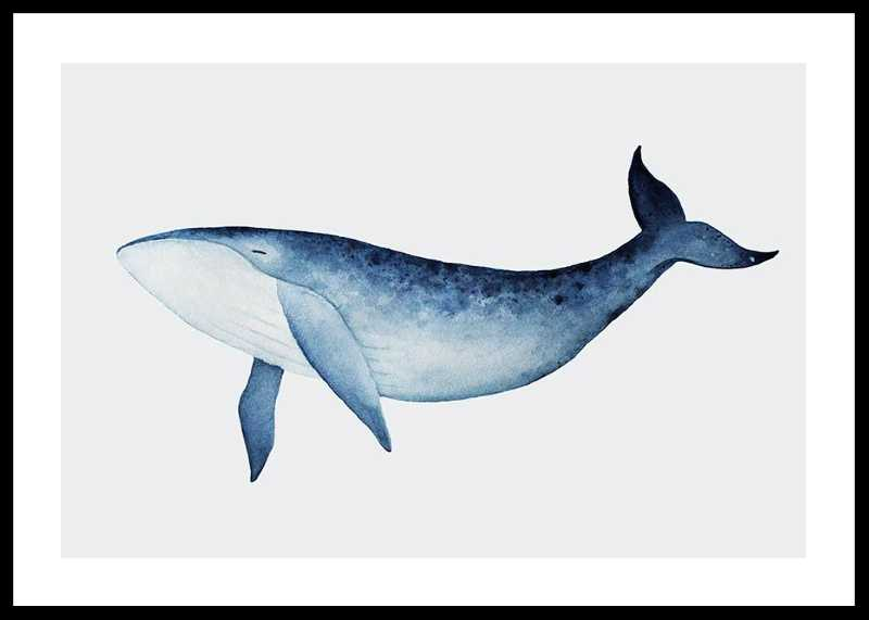 Watercolor Whale-0