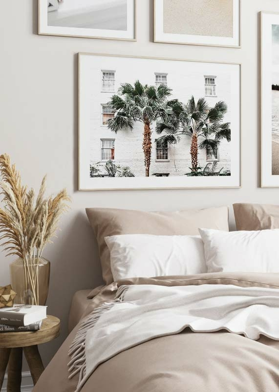City Palms-4