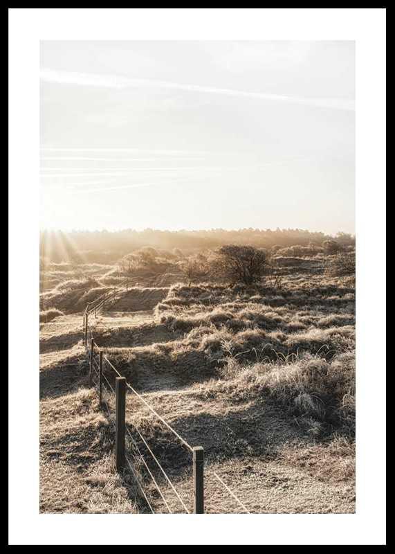Dutch Landscape-0