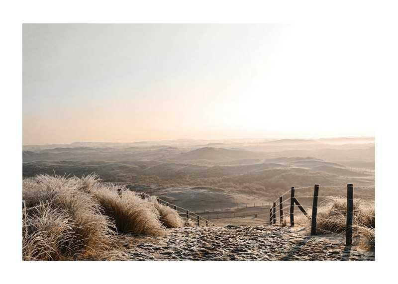 Desert View-1