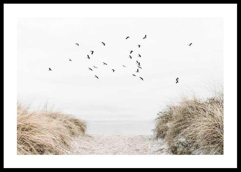 Free As A Bird-0
