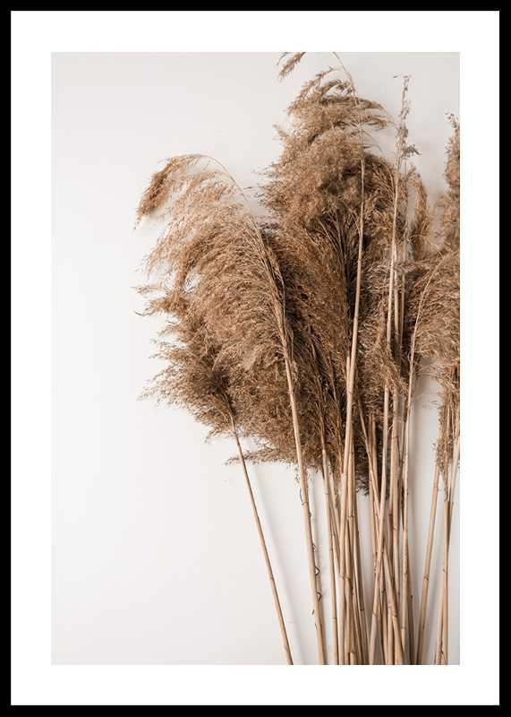 Dried Bouquet No3