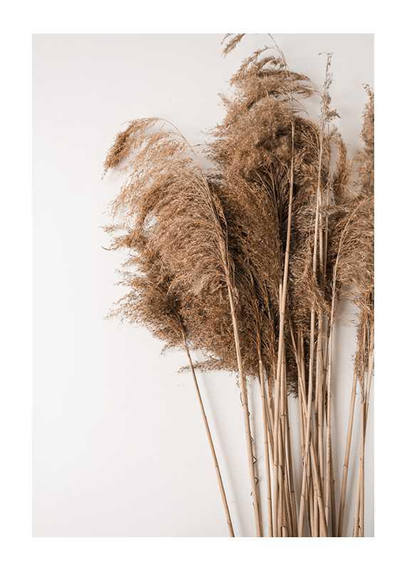 Dried Bouquet No3-1