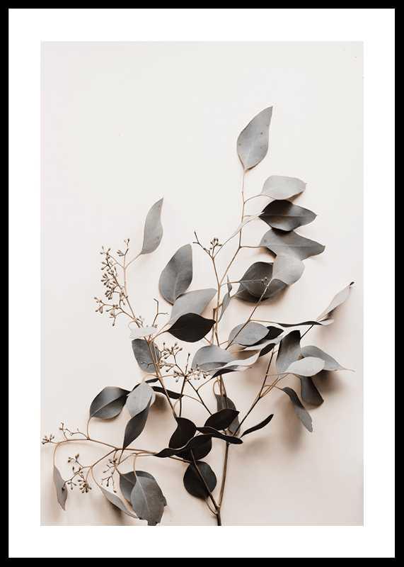 Botanical Branch